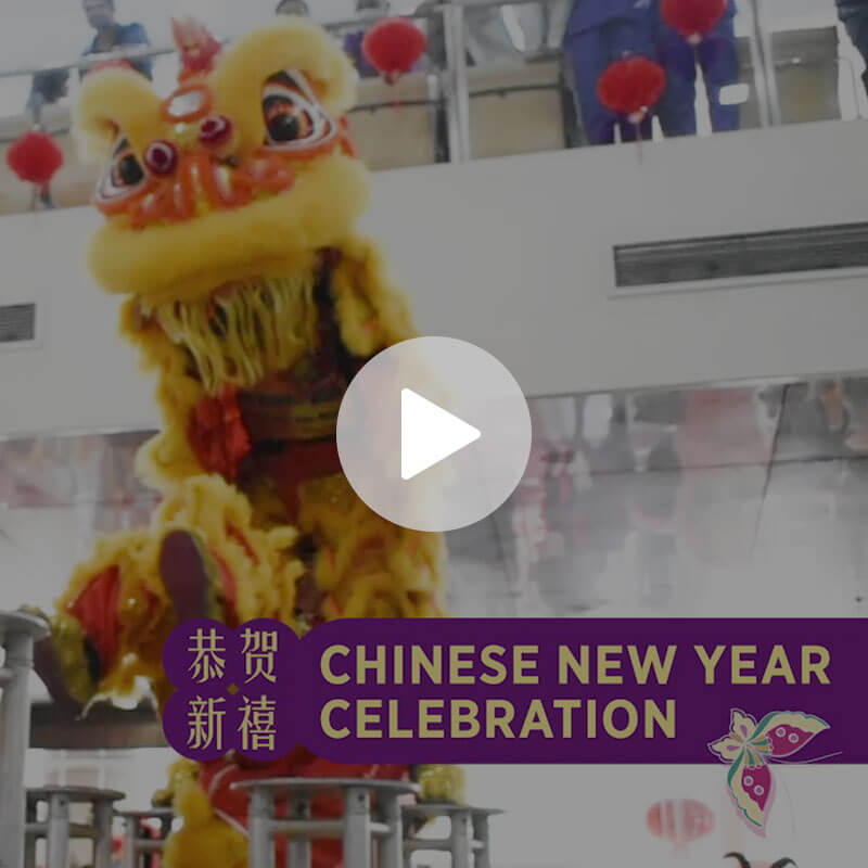 Chinese New Year Celebration Video Thumbnail